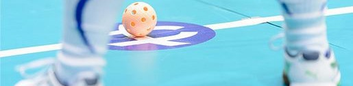 cropped-cropped-floorball5.jpg