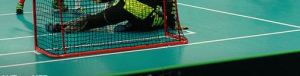 floorball13