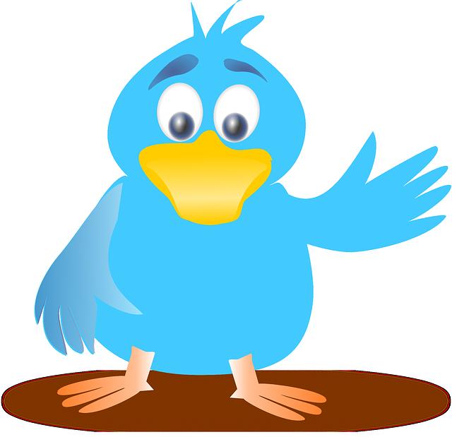 blog twitter