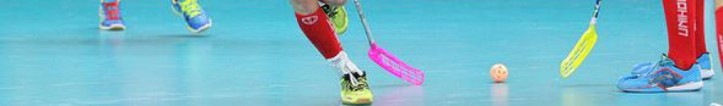 cropped-floorball117.jpg