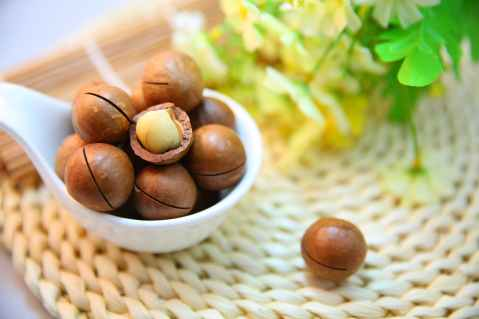 macadamia-nuts-nut-protein.jpg
