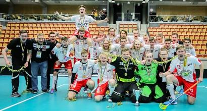 U19 2015 VM